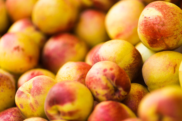 Local Nectarines available in the Willamette Valley
