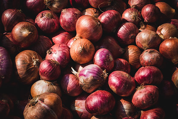 Local Onions available in the Willamette Valley