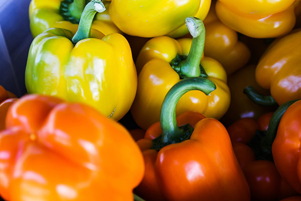 Local Peppers available in the Willamette Valley