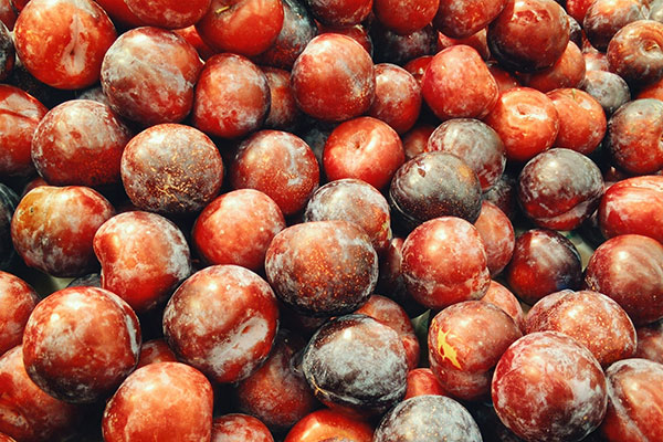 Local Plums available in the Willamette Valley