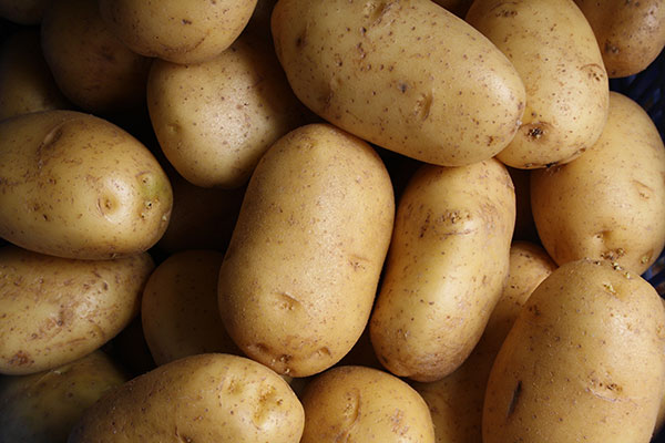 Local Potatoes available in the Willamette Valley