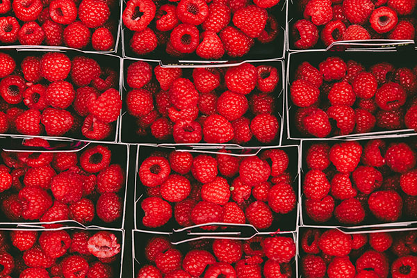 Local Raspberries available in the Willamette Valley